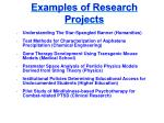 examples of research projects