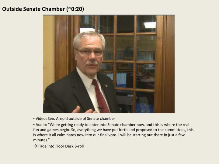 Outside Senate Chamber (~0:20)