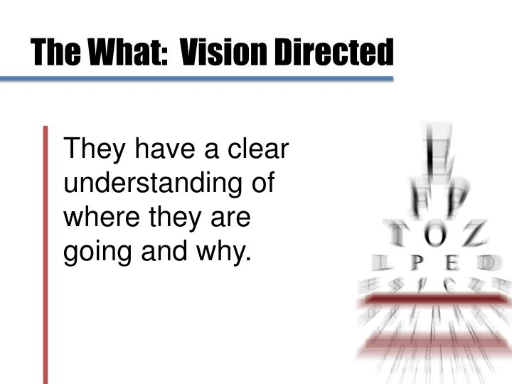 The What:  Vision Directed