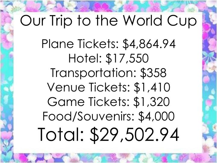 Our trip to the world cup