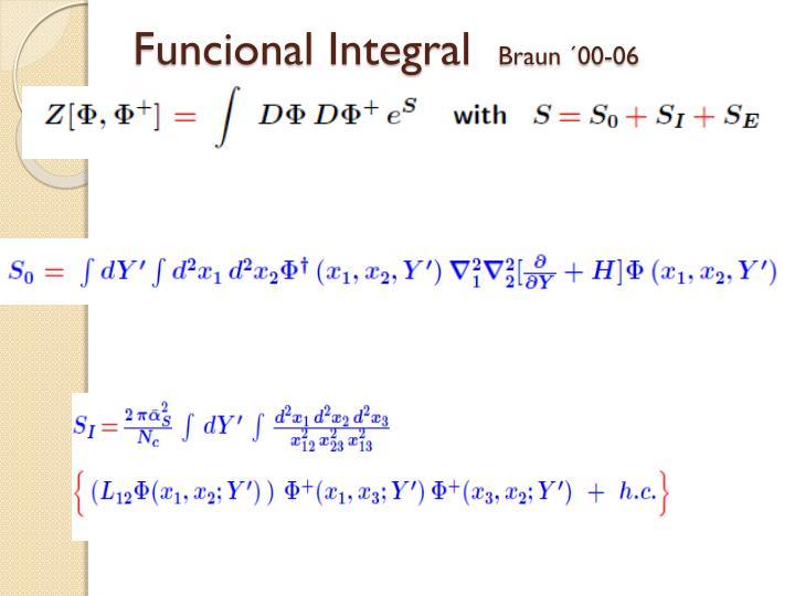 Funcional Integral