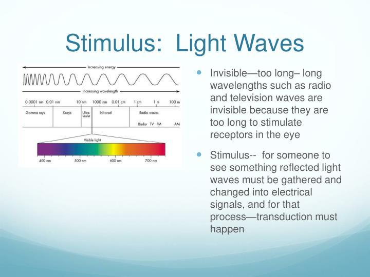 Stimulus:  Light Waves