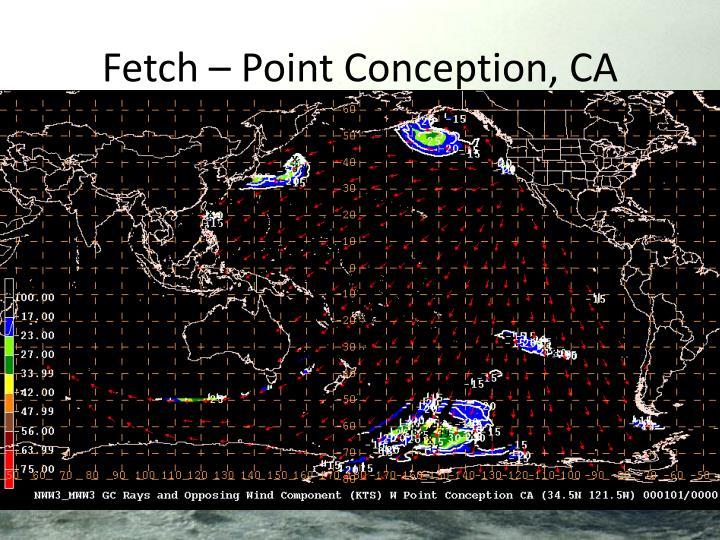 Fetch – Point Conception, CA