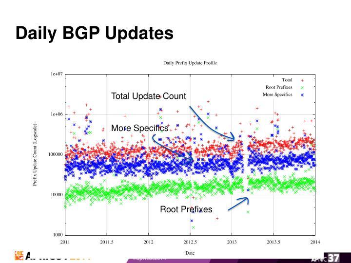 Daily BGP Updates