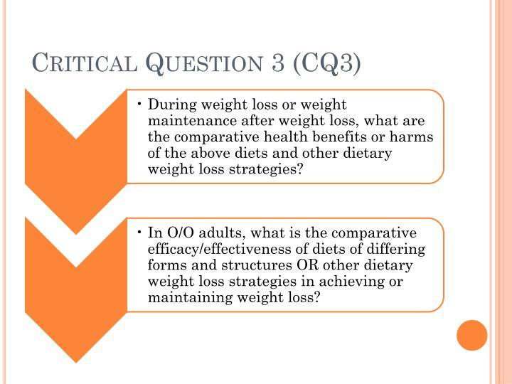 Critical Question 3 (CQ3)