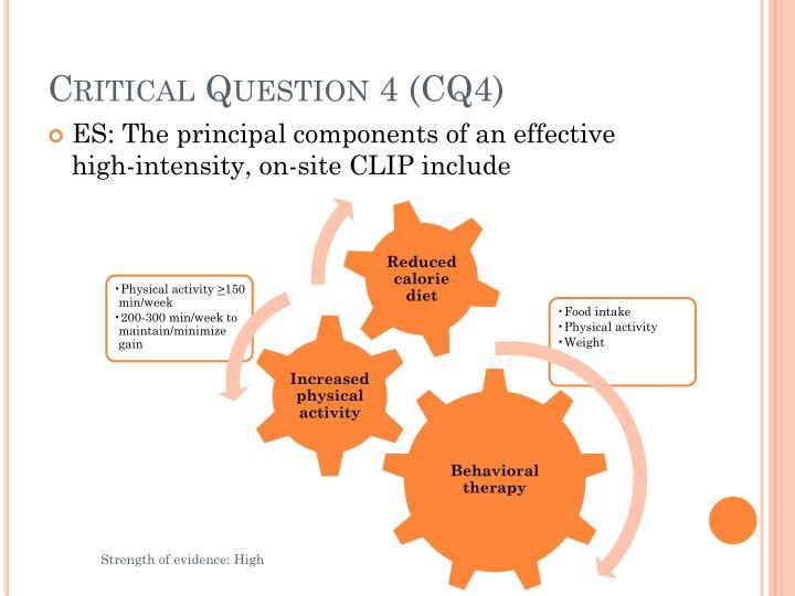 Critical Question 4 (CQ4)