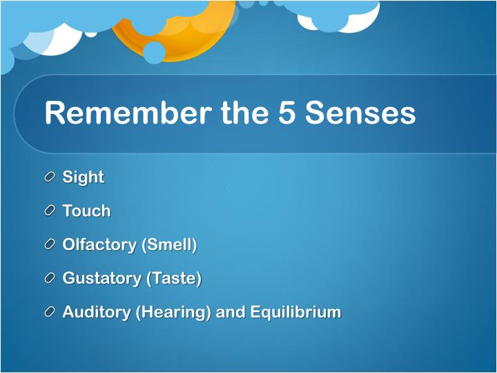 Remember the 5 senses