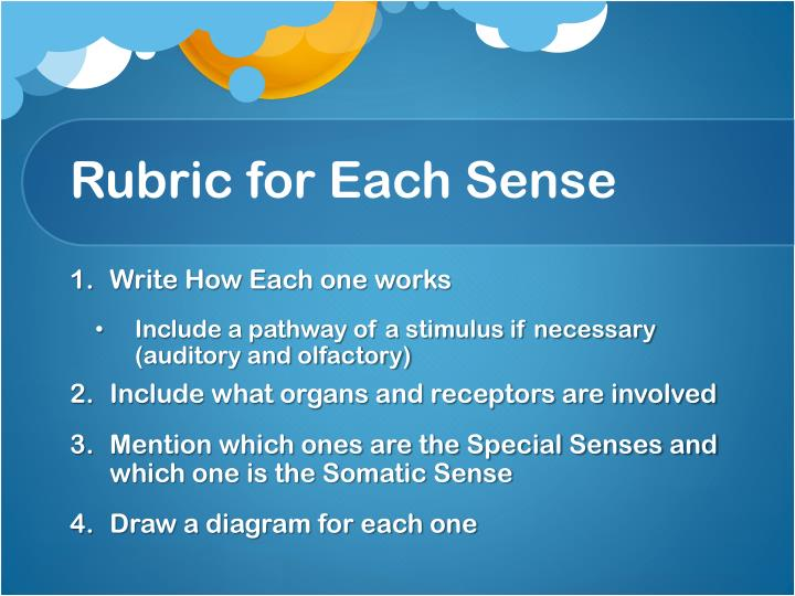 Rubric for each sense