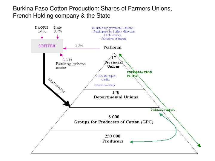 Burkina Faso Cotton Production: Shares of Farmers Unions, French Holding company & the State