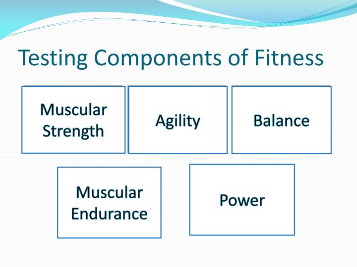 Testing Components of Fitness
