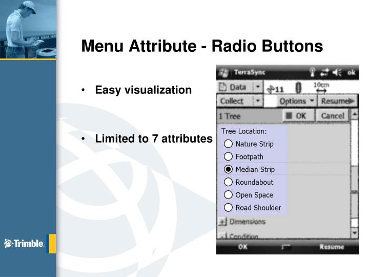 Menu Attribute - Radio Buttons