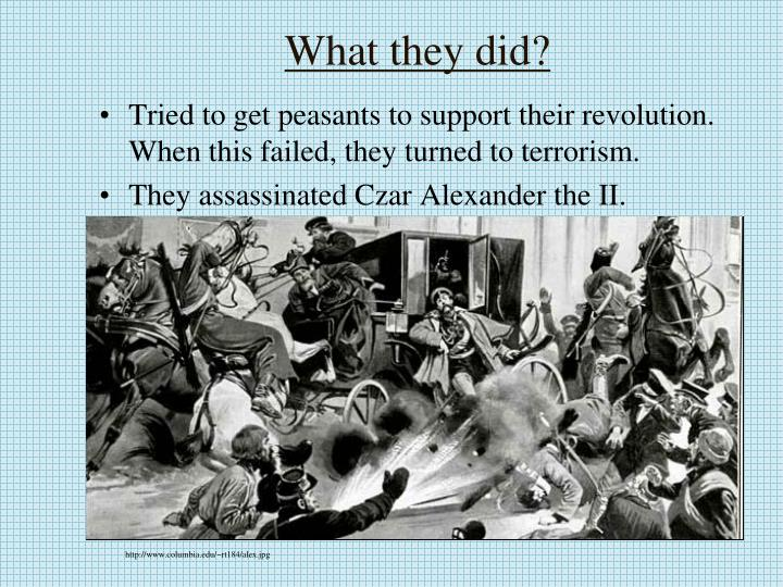 What they did?