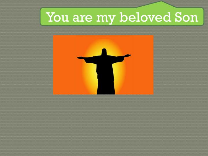 You are my beloved Son