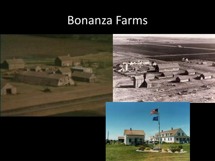 Bonanza Farms