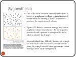 synaesthesia1