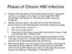 phases of chronic hbv infection
