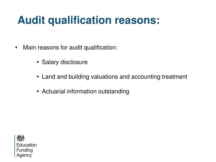 Audit qualification reasons: