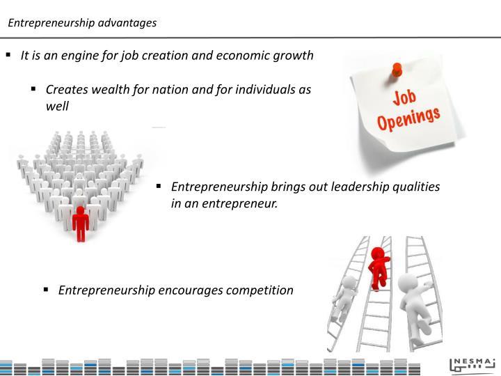 Entrepreneurship advantages
