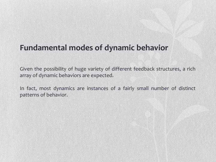 Fundamental modes of dynamic behavior