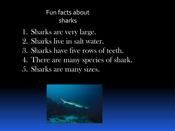 Fun facts about sharks
