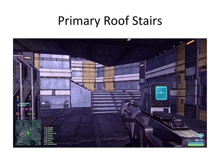 Primary Roof Stairs