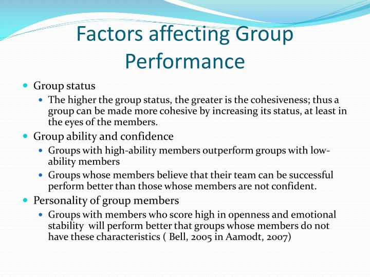 Factors affecting Group Performance