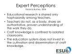 expert perceptions deanna burney 2006