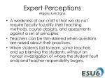 expert perceptions wiggins mctighe