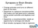 synapses or brain breaks judith willis