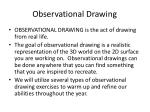 observational drawing1