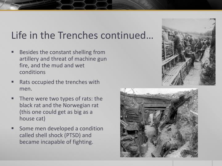 Life in the Trenches continued…