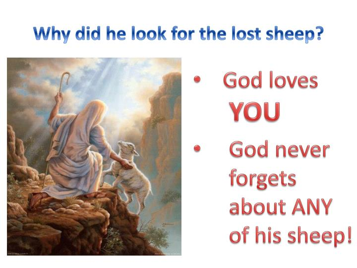 Why did he look for the lost sheep?