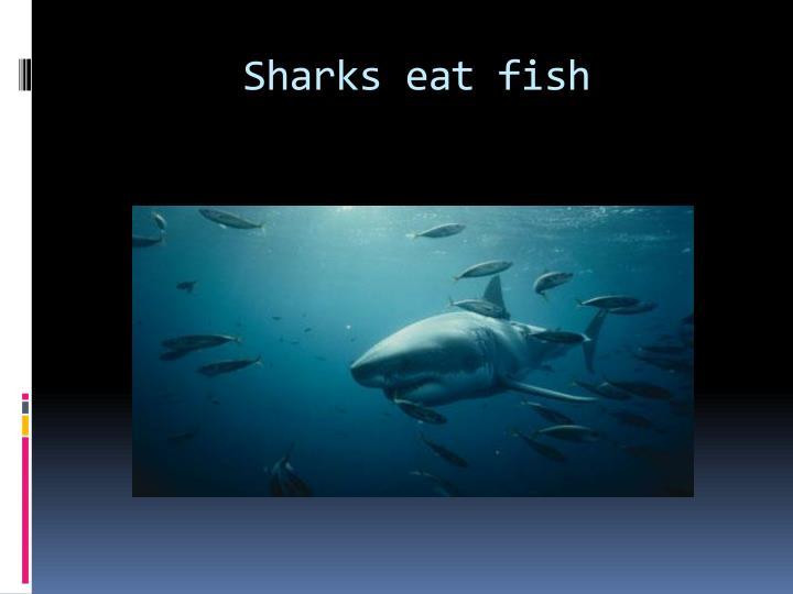 Sharks eat fish