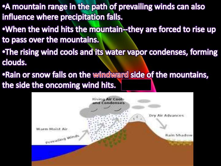 A mountain range in the path of prevailing winds can also influence where precipitation falls.