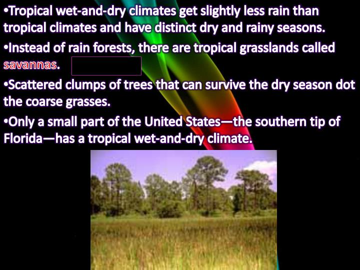 Tropical wet-and-dry climates get slightly less rain than tropical climates and have distinct dry and rainy seasons.