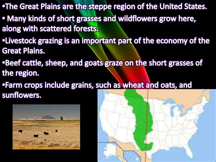 The Great Plains are the steppe region of the United States.