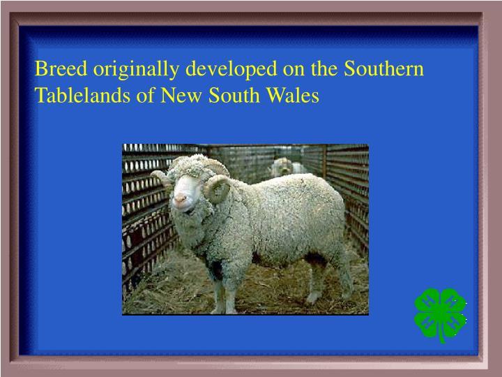Breed originally
