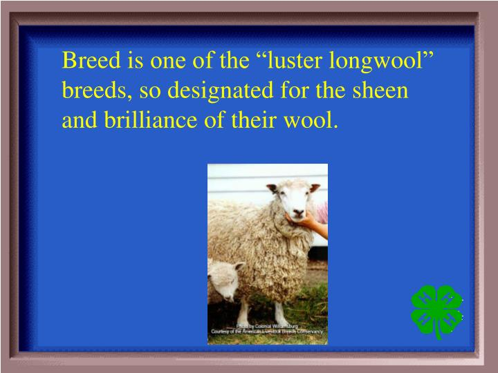 Breed is
