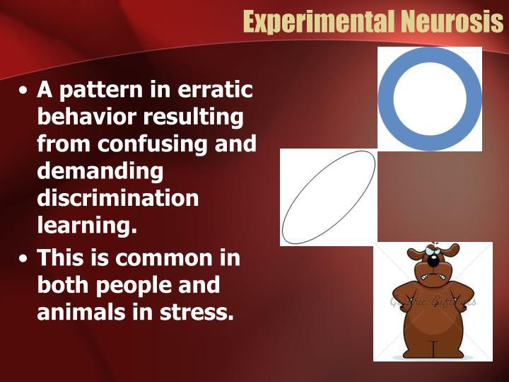 Experimental Neurosis