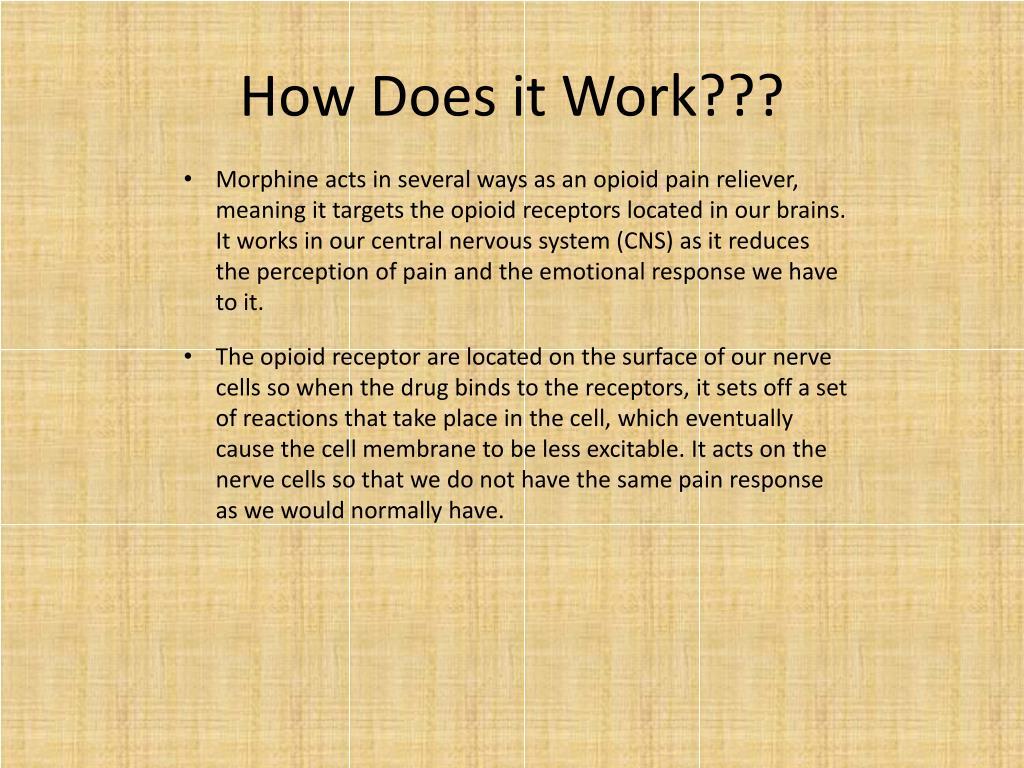 PPT - Morphine PowerPoint Presentation - ID:2643414
