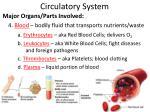 circulatory system4