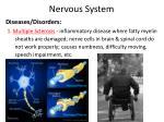 nervous system11