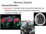 nervous system13