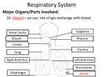 respiratory system10