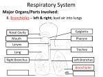 respiratory system8