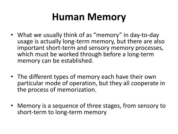 human being memory Human input output channels and human memory  being able to open, save, print, and use help in a word processor means the user can do it in a spreadsheet, a.