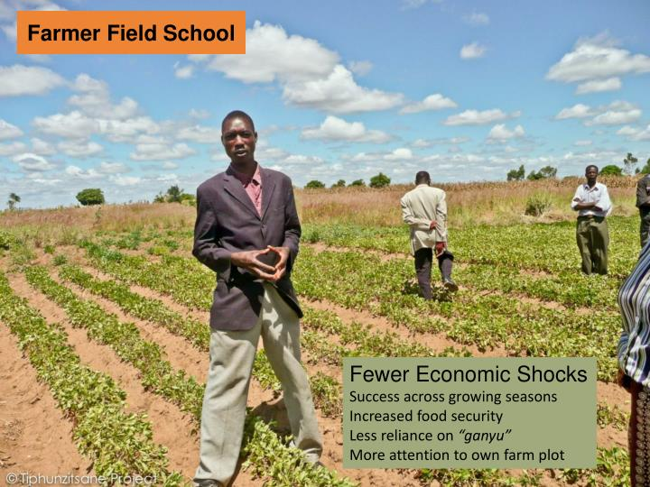 Farmer Field School