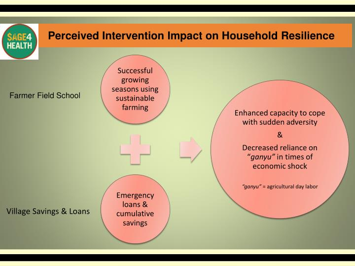 Perceived Intervention Impact on Household Resilience