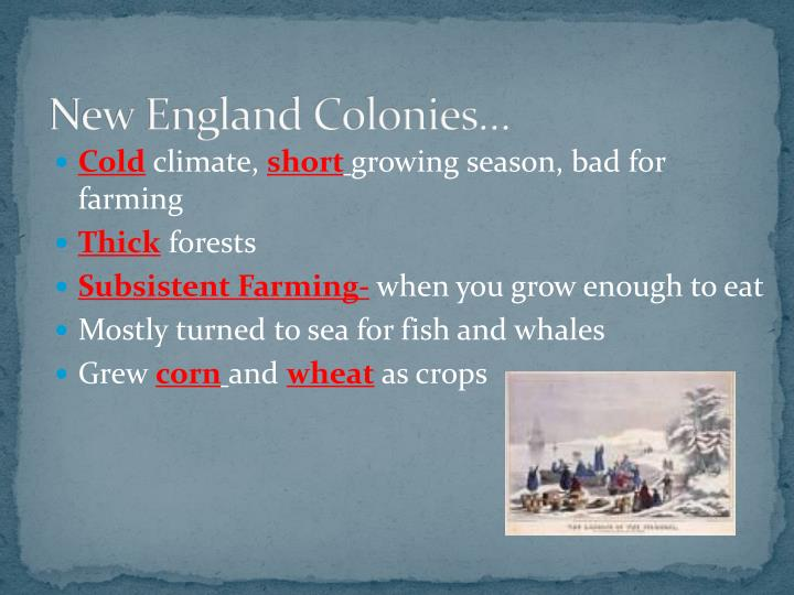 New England Colonies…
