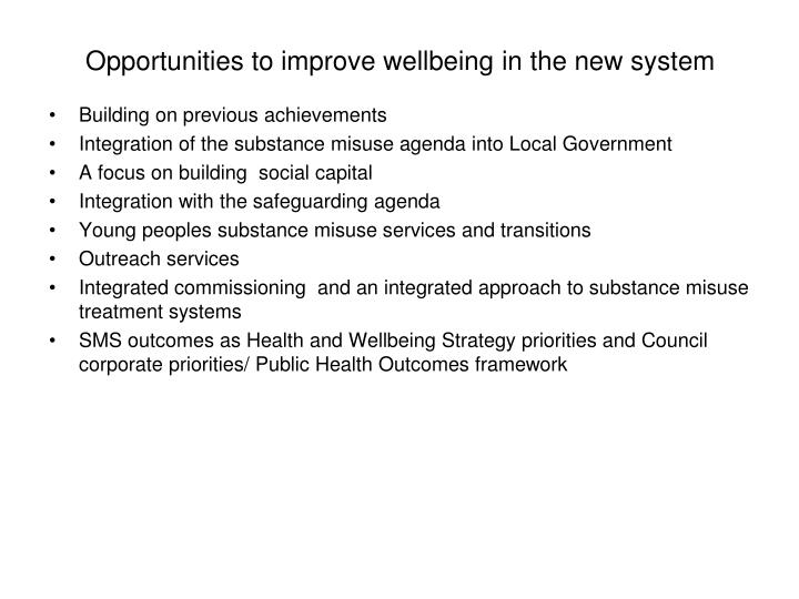 Opportunities to improve wellbeing in the new system